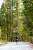Weg in het midden van een bos Royalty-vrije Stock Afbeelding