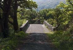 Weg in het Nationale Park van Killarney in Ring van Kerry in Ierland Stock Afbeelding
