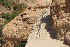 Weg in het Natuurreservaat van Ein Gedi, Israël Royalty-vrije Stock Foto's
