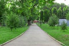 Weg in het park Stock Afbeelding