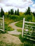 Weg in het park in de zomer Stock Foto's
