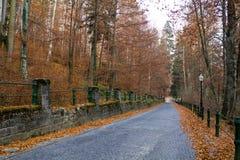 Weg II van de herfst Stock Foto's
