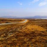 Weg in IJsland stock afbeelding