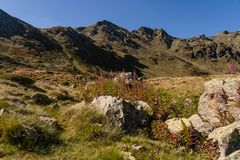 Weg im De Arteny, Pyrenäen, Andorra Parc Natural de la Vall stockbild