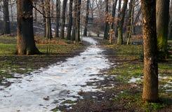 Weg im Frühjahr bedeckt mit Schnee in einem Wald am 21. Januar 2015 Stockbild