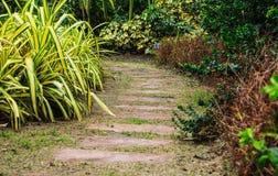 Weg im Garten stockbild