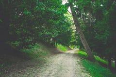 Weg im Garten Stockbilder