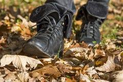 Weg im Herbstpark Lizenzfreie Stockbilder