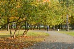 Weg im Herbststadtpark Lizenzfreies Stockfoto