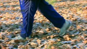 Weg im Herbstwald, gefrorenes Blatt, das unter meinen Füßen raschelt stock footage