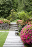 Weg im japanischen Garten Stockbild