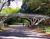 Weg im Park Lizenzfreie Stockfotografie
