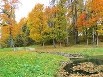 Weg im Park und in den alten Herbstbäumen, Litauen Stockfotos