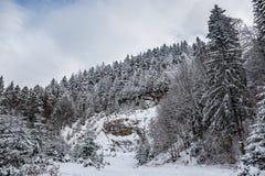 Weg im Wald im Winter, Siebenbürgen, Rumänien lizenzfreie stockbilder