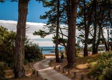 Weg im Wald zum schönen Strand, Bretagne, Frankreich Stockbilder