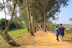 Weg im Westteil von Nam Sang Wai, stockfoto