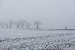 Weg im Winternebel Stockfoto