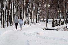 Weg im Winterpark lizenzfreie stockfotografie
