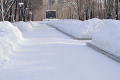 Weg im Winterpark Lizenzfreies Stockfoto