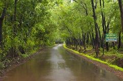 Weg in konkan op een regenachtige dag, India royalty-vrije stock afbeeldingen