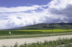 Weg langs de bergen Stock Foto's