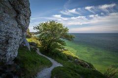 Weg langs de kalksteenklippen langs de westkust van Gotland, Zweden stock foto's