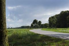 Weg langs de weiden van Alblasserwaard, Nederland royalty-vrije stock fotografie