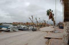 Weg met heel wat beschadigde rond palmen royalty-vrije stock foto's