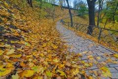 Weg met leuningen en gevallen bladeren in park Stock Afbeelding