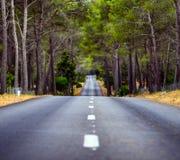 Weg in midden van bos stock fotografie