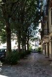 Weg mit Bäumen und Häusern #2 Stockfotos