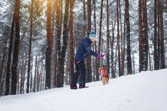 Weg mit dem Hund durch den Winterwald streichelt Spiel lizenzfreies stockbild