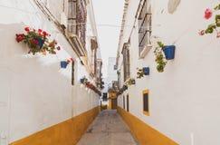 Weg mit dem Hund durch Sanlucar de Barrameda lizenzfreie stockfotos