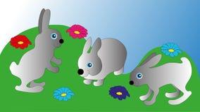 Weg mit drei grauer Hasen in der Reinigung Stockfoto