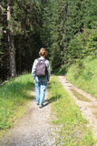 Weg mit Wanderer lizenzfreies stockbild