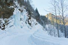 Weg naast een bevroren waterval Stock Foto's
