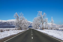 Weg in Nieuw Zeeland Stock Afbeelding