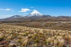 Weg om de Meren van Ruapehu en Tama-, het Nationale Park van Tongariro, N op te zetten stock afbeelding