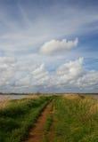Weg onder bewolkte hemelen Stock Foto