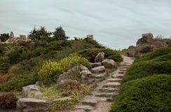 Weg op de groene heuvel Royalty-vrije Stock Foto