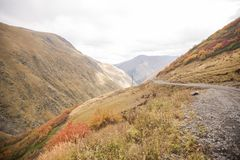 Weg op de Kaukasische manier van de bergenherfst aan Georgië stock afbeeldingen