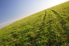 Weg op een gras Stock Foto