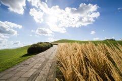 Weg op een groene heuvel stock foto's