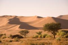 Weg op een woestijn in Afrika Stock Foto's