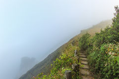 Weg op flank van heuvel op bergen die door mist behandelden stock foto's