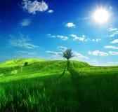 Weg op groene heuvels en zon blauwe hemel Royalty-vrije Stock Afbeeldingen
