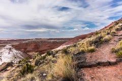 Weg op helling, Geschilderde Woestijn, Arizona Royalty-vrije Stock Afbeeldingen