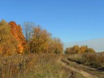 Weg op het gebied in de herfst stock fotografie