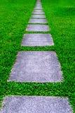 Weg op het groene gras Stock Afbeelding