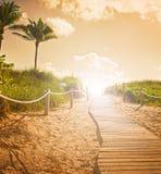 Weg op het zand die naar de oceaan in het Strand van Miami gaan stock afbeeldingen